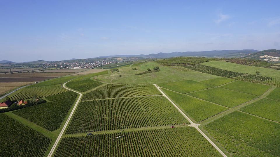 Mezőgazdasági terület fotózás